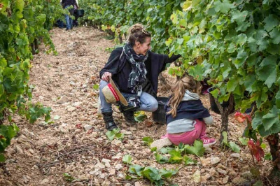 vendanges_cb_enfants2